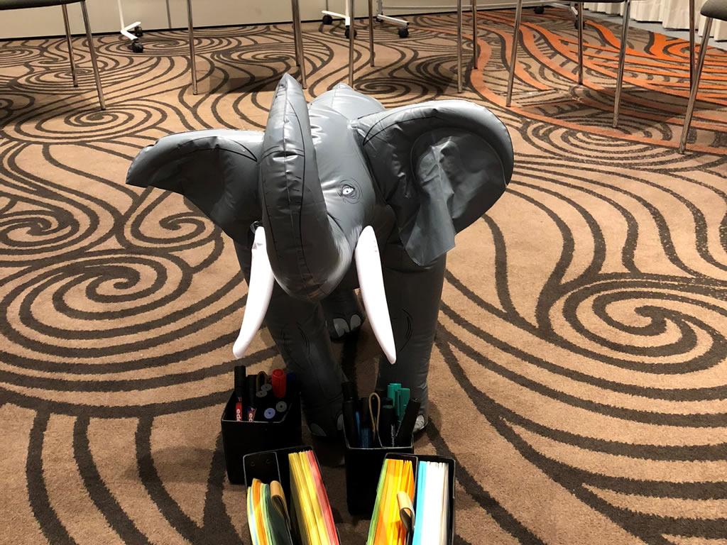 Der Elefant im Raum wird empathisch geklärt durch die Moderatoren von teamElephant