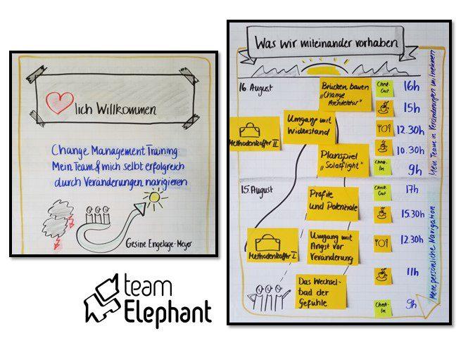 Change Management Seminar und Training mit teamElephant