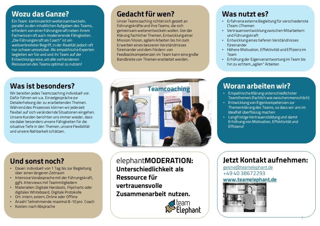 Teamcoaching_Online Teamworkshop oder Offline_teamElephant_Hamburg_One-Pager